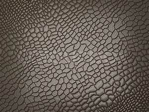 Alligator skin: useful as texture or background | Stock ...