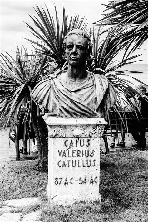 gaius valerius catullus catull zitateeu