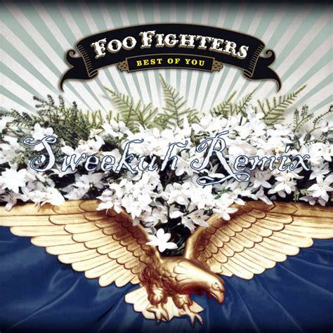 The Foo Fighters The Best Of You Foo Fighters Best Of You Sweekuh Remix