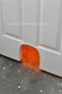 DIY Cat Potty Door - First Home Love Life
