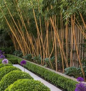 Wie Schnell Wächst Bambus : rhizomsperre f r bambus und ausl uferbildende pflanzen verlegen ~ Frokenaadalensverden.com Haus und Dekorationen