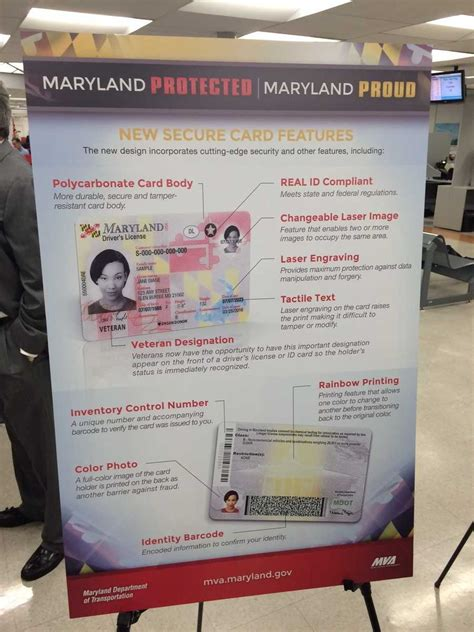 images     maryland drivers licenses