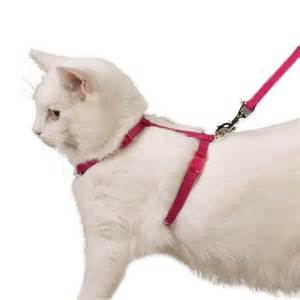 cat harness cat harness and leash pink get free image about wiring