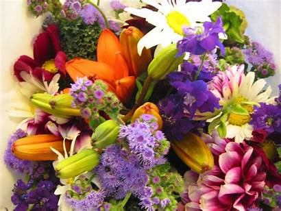 Flowers Different Arrangement Flower Bouquet Fresh Mix