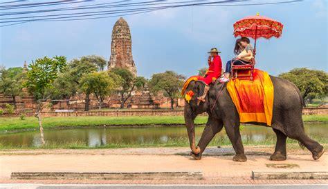 Elephant Kills Tourist During Thailand Trek