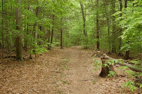Chebacco Woods | Essex County Trail Association