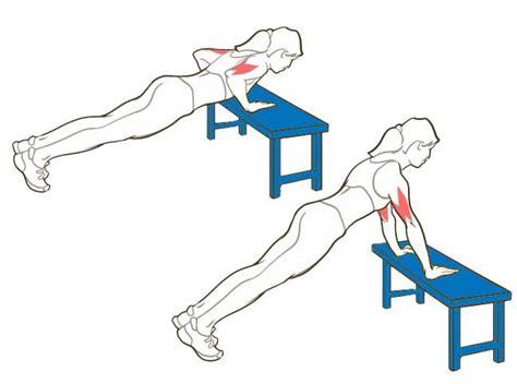 esercizi interno braccia esercizi per rassodare interno braccia