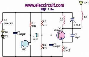 Schematics - 555 Am Transmitter