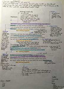 exercise while doing homework need help with a thesis statement auditing homework help