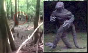 south carolinas lizard man    captured