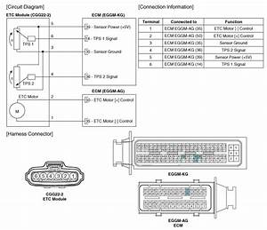 Kia Rio  Circuit Diagram - Specification