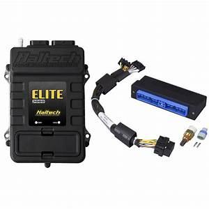 Elite Nissan Patrol Y60  Tb42  Plug  U0026 39 N U0026 39  Play Adaptor