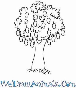 How To Draw A Mango Tree