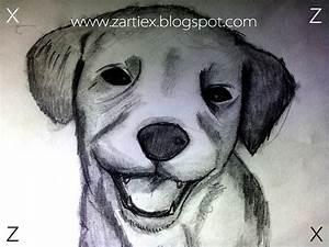 Dibujos para imprimir Zartiex Imágenes Taringa!