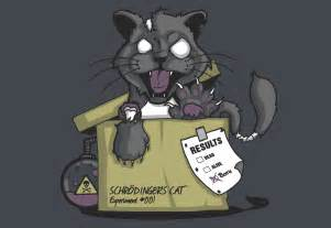so what is the deal with schrodinger s cat sincy science