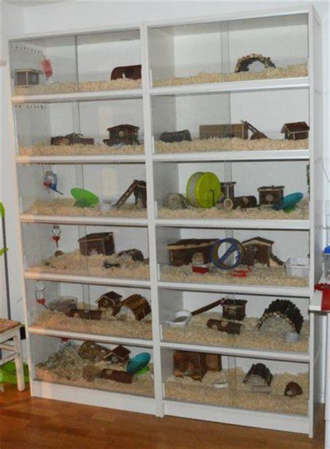 convert bookshelf  rodentsmall animal habitat id