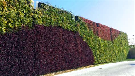 Outdoor Green Wall-atlantis Aurora