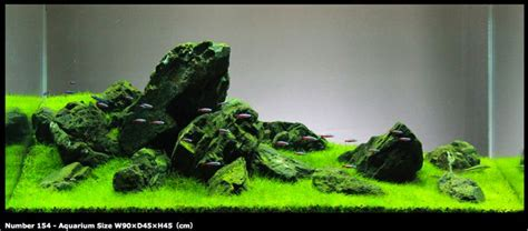 iwagumi japanese rock garden style aquascape  aqua
