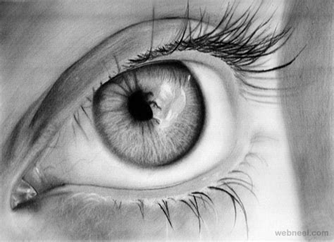 pencil drawings pencil drawing  photo