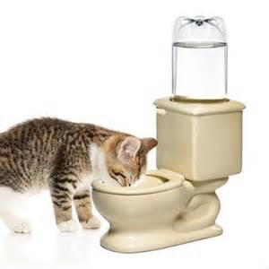 cat water dish toilet and cat water bowl the green