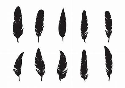 Feather Silhouette Feathers Vector Plume Drawing Clipart