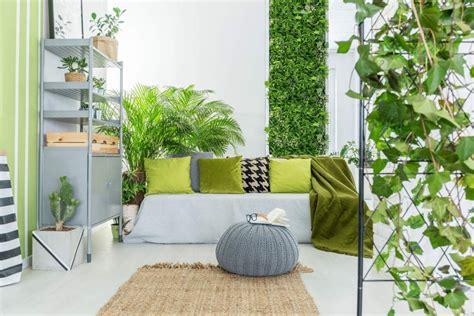 INTERIOR TRENDS 2020 Low maintenance indoor plants
