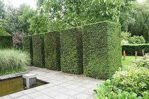 Bodendecker Statt Gras : formschnitt eiben wasser im garten gr ser das mach ich mal pinterest eibe gr ser und ~ Sanjose-hotels-ca.com Haus und Dekorationen