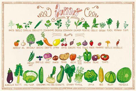 cuisiner les fleurs de courgette tous les fruits et légumes du mois de juillet