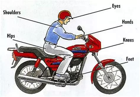 What Is The Correct Riding Posture For A Motorcycle Rider