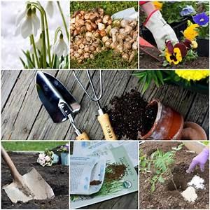 Gartenarbeit Im Februar : gartenkalender im m rz welche gartenarbeit steht im ~ Lizthompson.info Haus und Dekorationen