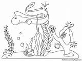 Ocean Plankton Clipart Underwater Cliparts Plants Clip Coloring Library sketch template