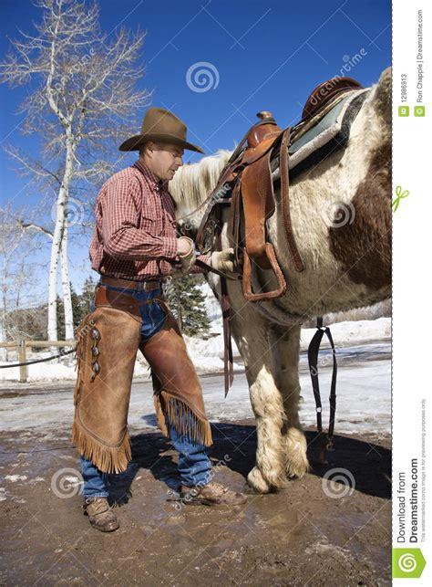 cowboy putting saddle  horse stock  image