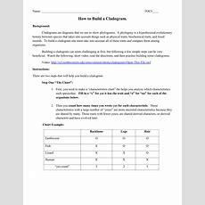 Worksheet Cladogram Worksheet Worksheet Fun Worksheet Study Site