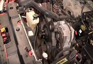 Ford Mustang V6 1994 To 2004 How To Replace Serpentine