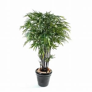 Bambou Noir Prix : bambou noir boule semi naturel grossiste en plantes stabilis es et ~ Teatrodelosmanantiales.com Idées de Décoration