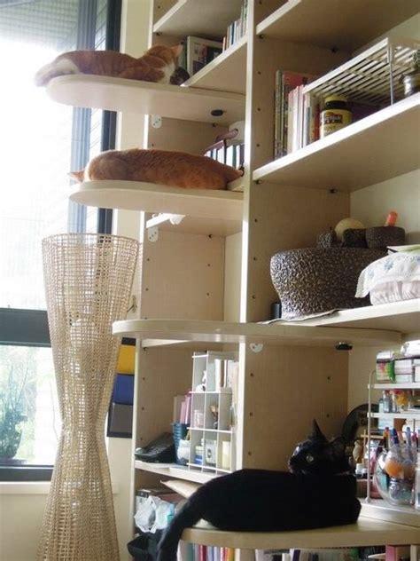 Best 25+ Cat Stairs Ideas On Pinterest  Cat Climbing