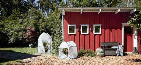Garten Winterfest Machen Ab Wann by Pflanzen Winterfest Machen Unsere Tipps Tchibo