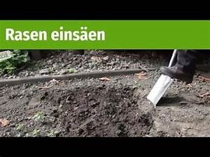 Rasen Richtig Säen : ratgeber rasen s en gartenxxl youtube ~ A.2002-acura-tl-radio.info Haus und Dekorationen