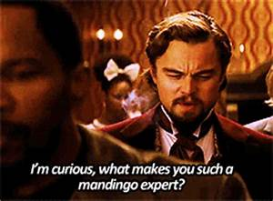 Django Unchained (2012) Quote (About curious, expert, gifs ...