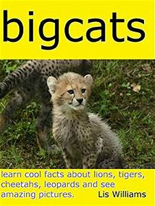 Big Cats - Learn Cool Facts about Lions, Tigers, Leopards ...