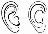 Ear Drawing Human Vector Royalty sketch template