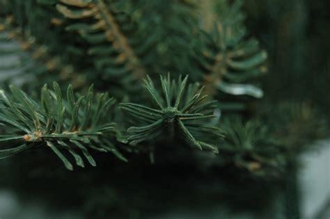 pe baum buri 174 weihnachtsbaum 180cm spritzguss