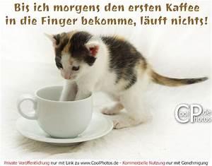 Lustige Guten Morgen Kaffee Bilder : bis ich morgens den ersten kaffee in die finger bekomme l uft nichts ~ Frokenaadalensverden.com Haus und Dekorationen