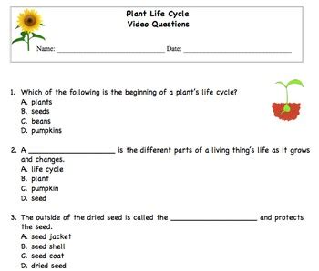 plant life cycle multiple choice questions  texas