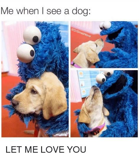 Let Me Love You Meme - me when i see a dog let me love you meme on me me