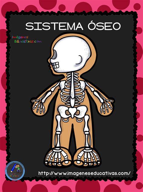 El Cuerpo Humano; Aparatos y Sistemas para Primaria