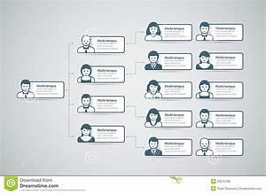 Organization Chart Stock Vector  Image Of Presentation