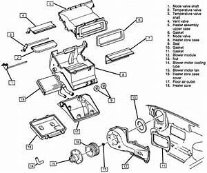 Diagram Of 1994 F250 5 8 Engine  U2022 Downloaddescargar Com