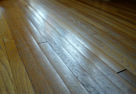 wood flooring buckling wood floors buckling do not sand