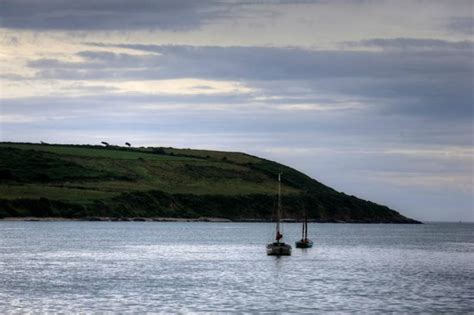 Boat Trip Youghal by Prevailing Winds Picture Of Blackwater Day Cruise